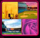 Traditional & Realistic Paintings - Yankee Stadium & Sports Paintings to Cityscape Paintings, Florals and Landscapes. Click to Enter Gallery 2